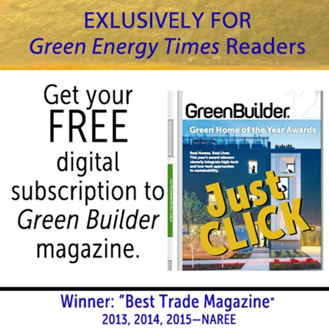 green-builder-free-subscription