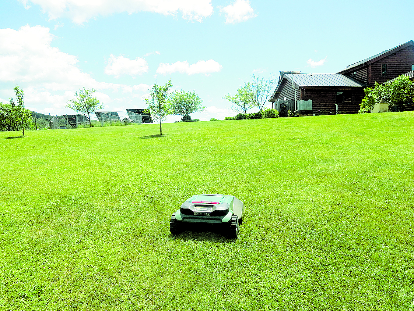 This lawn was a former cow pasture. No fertilizers, no seeding, and no ammendments, except the mowing. The owners have stopped mowing the lawn -- and let this robot mower keep it looking like a golf course. Photo: N. R. Mallery