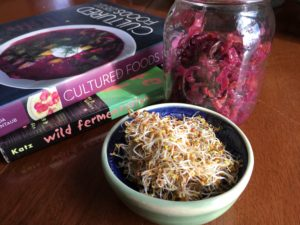 Winter growing ideas - sauerkraut and sprouts. Courtesy photos: Kay Aihla McGrenaghan Cafasso